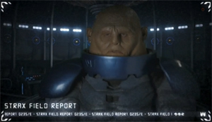 Ask Strax