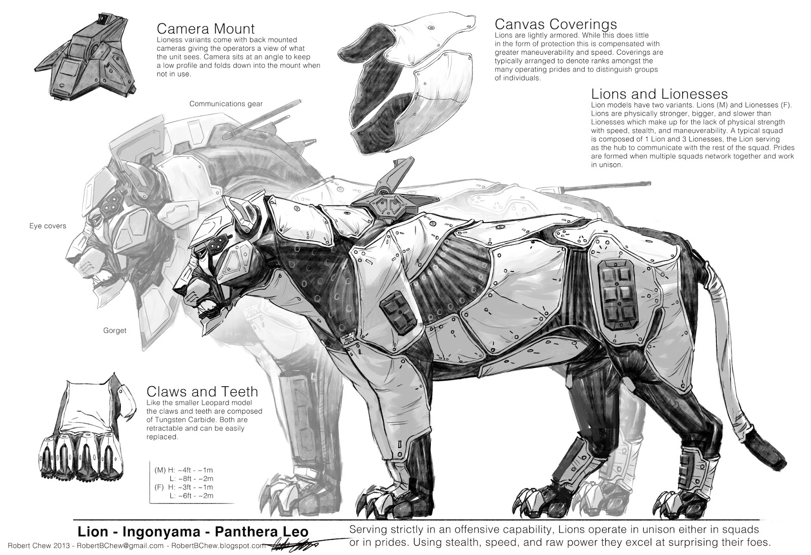 Big_Five_Lion_Robert_Chew_armor